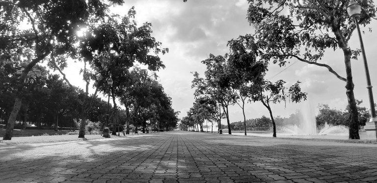 Samsung A9 - King Rama IX Park - Oct 2019 351.jpg