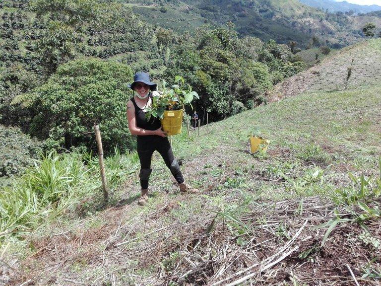 Reforestation of Native Species in Colombia Libano Tolima finca el Pensar.jpg
