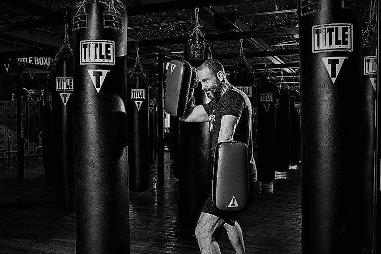 boxer-1923670_1280 (2).jpg