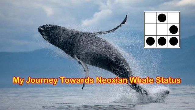 neoxian whale status.jpg