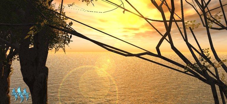 sol og trær A.jpg