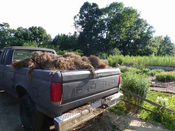 Last load of mulch crop July 2020.jpg