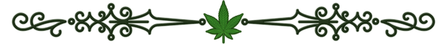 CS_GREEN_CANNACURATE_DIVIDER_TRANSPARENT.png