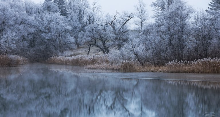 Frosty lake - peaceful and quiet