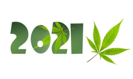 Cannabis-BPD-20201211-440x264.jpg