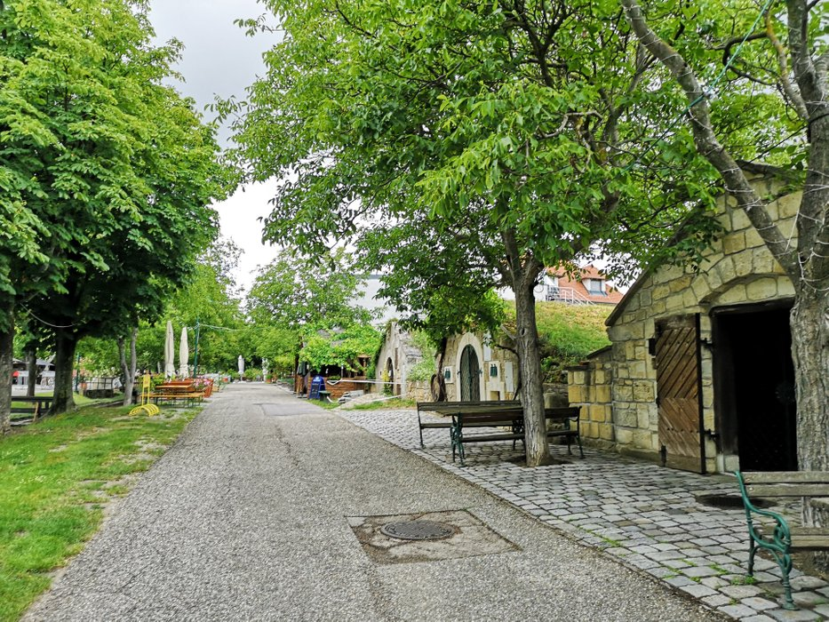 The history of settlement in Purbach can be traced even further to the deep history than Vienna. Photo by Alis Monte [CC BY-SA 4.0], via Connecting the Dots