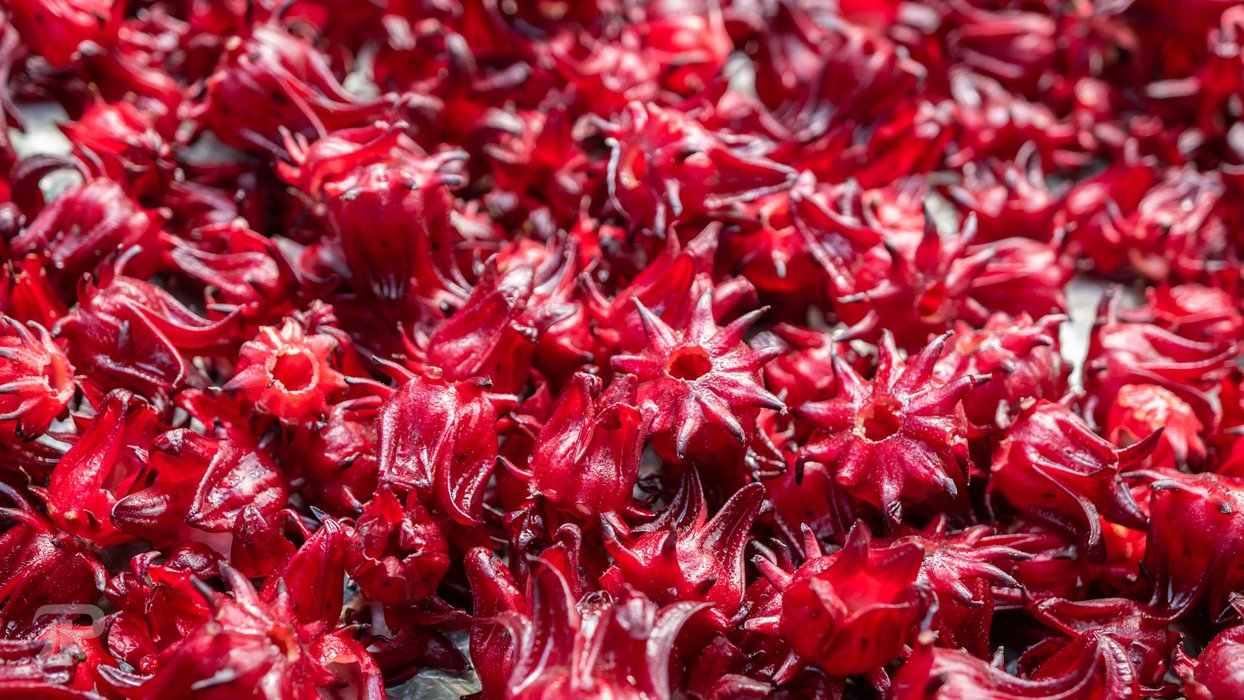Roselle being dried up under the sun