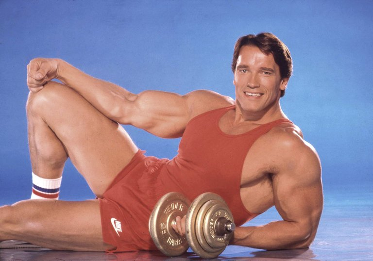 body-builder-actor-and-future-governor-of-california-arnold-news-photo-1589465525.jpg