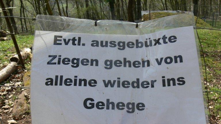 margaretenschlucht_weg_neckargerach_13_.jpg