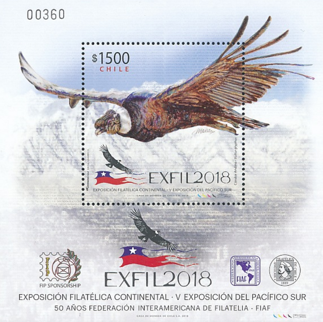 01.-Sellos-aves-Brasil-Chile-2-Chile.jpg.png