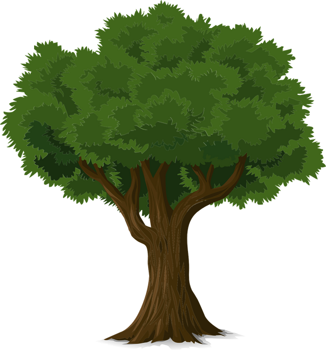 tree576847_1280.png
