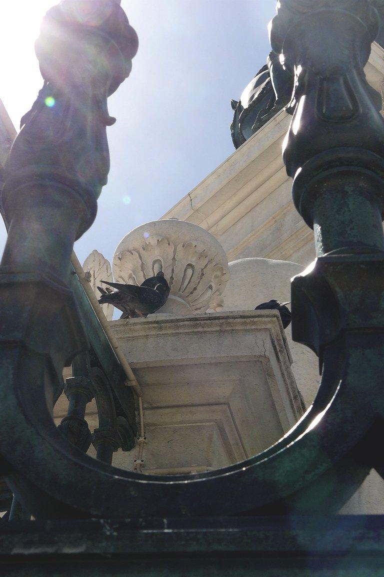 Lisbon center 1.jpg