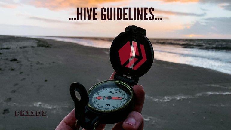 Hive Guidelines.jpg