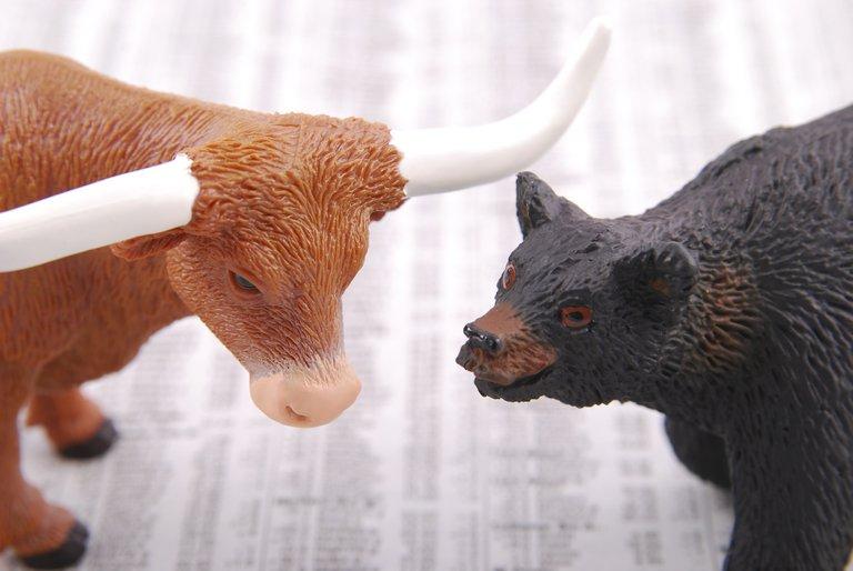 bull1885566_1920.jpg