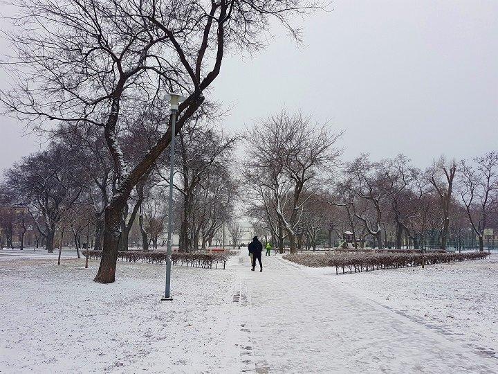 snow park.jpg