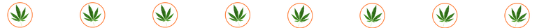 divider-leaf,orangeCircle.png