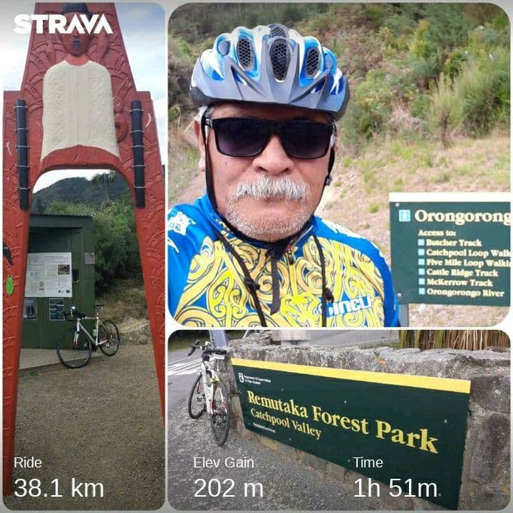 Ride Collage: Rimutaka Forest Park Trail Head