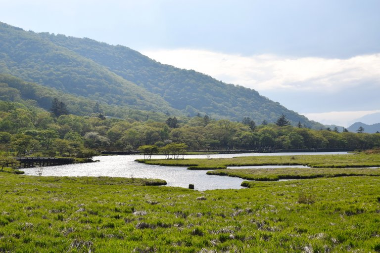 Kakumanbuchi wetland Gunma Prefecture credit 雷太 2.0.jpg