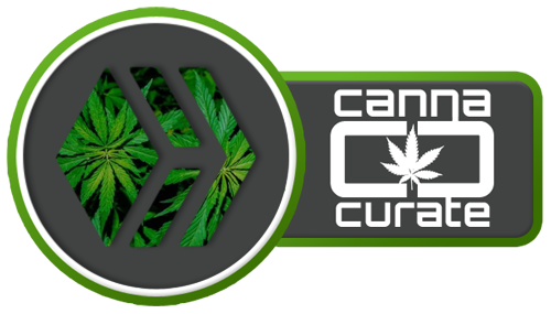 cannacurateHIVE.png