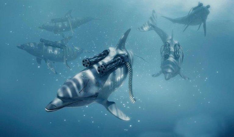 killer-dolphines-850x500.jpg