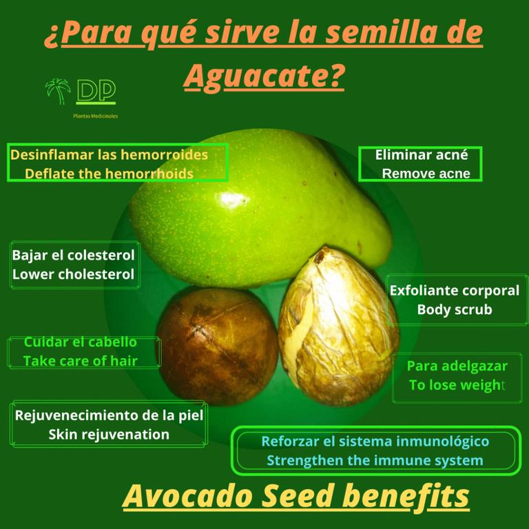 para qué sirve la semilla de aguacate