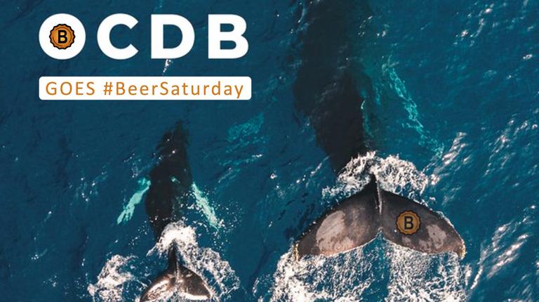 OCDB goes BeerSaturday.png