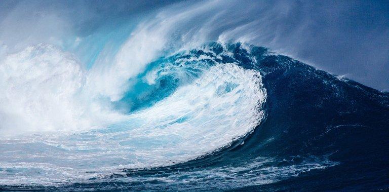wave-1913559_1920.jpg