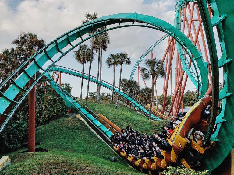 rollercoaster_sm.jpg