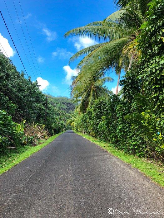 Huahine road-2.jpg