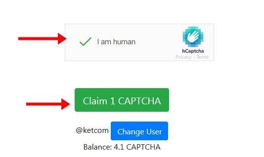 Captcha Token6.jpg