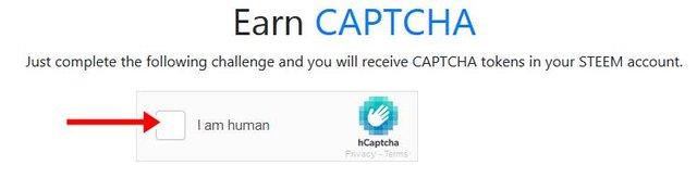 Captcha Token4.jpg