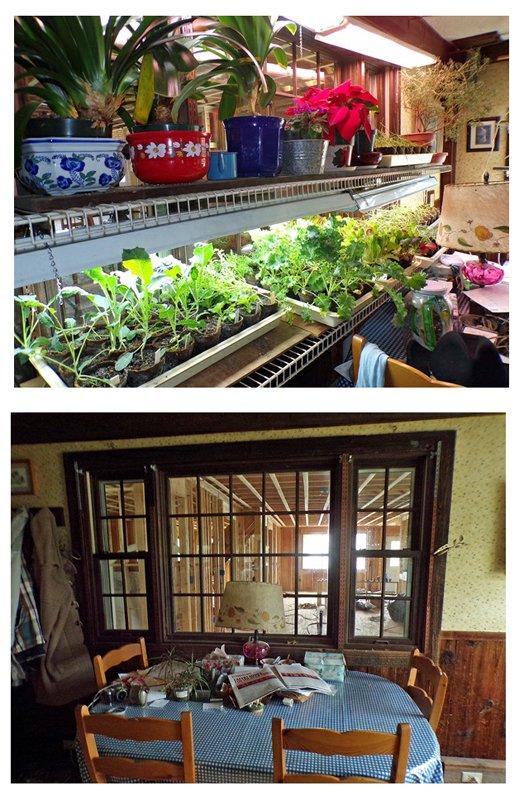 Dining Room Comparisons crop.jpg