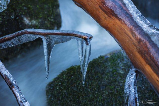 AlphabetHunt F - Freezing Frozen Frost