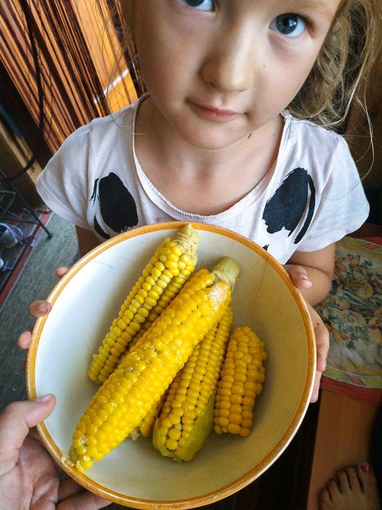 кукурудза 4.jpg