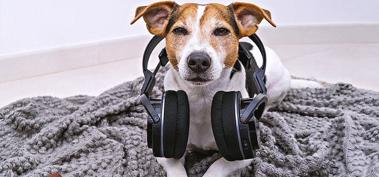 spencer with headphones.jpg