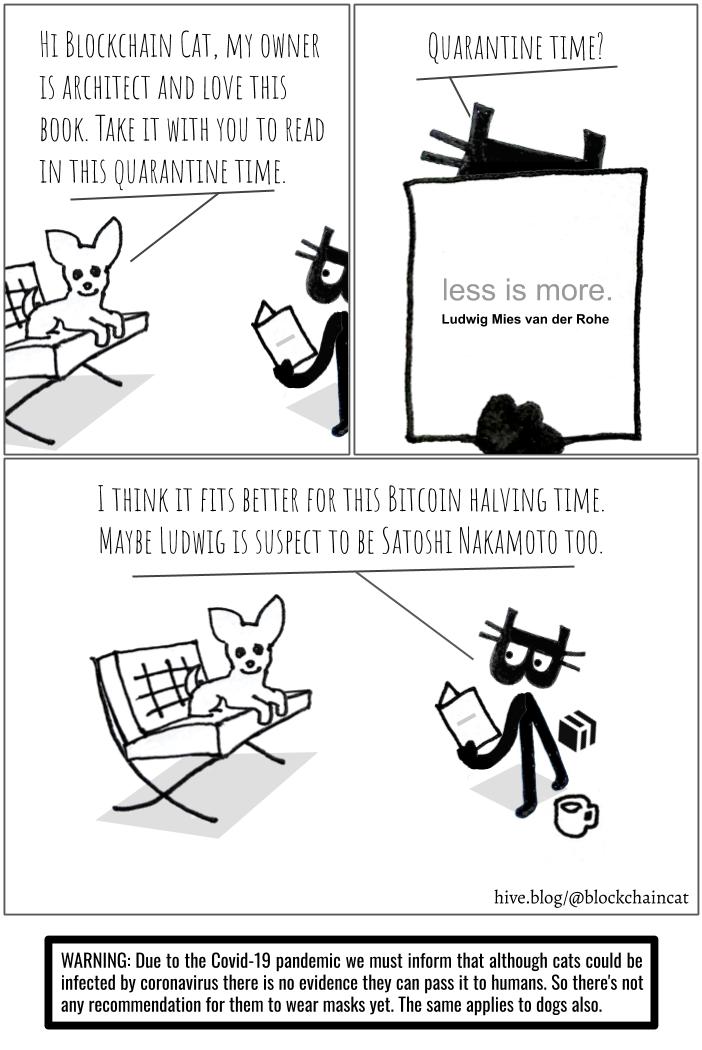 blockchaincat_halving.png