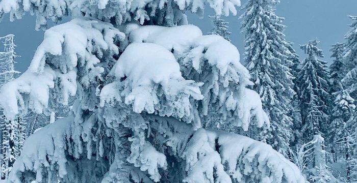 Beautiful  Winter in Gorce Mountains, Poland