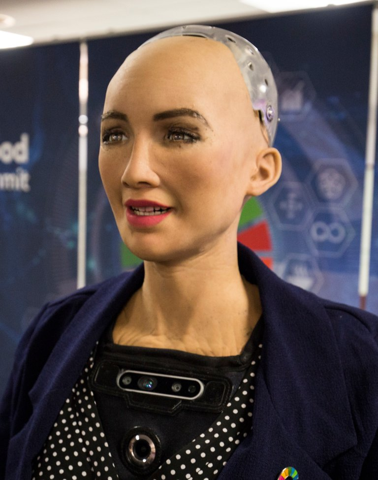 Sophia_at_the_AI_for_Good_Global_Summit_2018_(27254369347)_(cropped).jpg