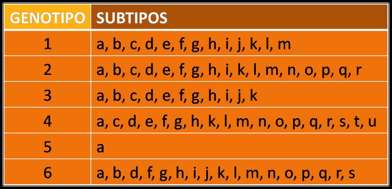 Sub tipos hepatitis C.png