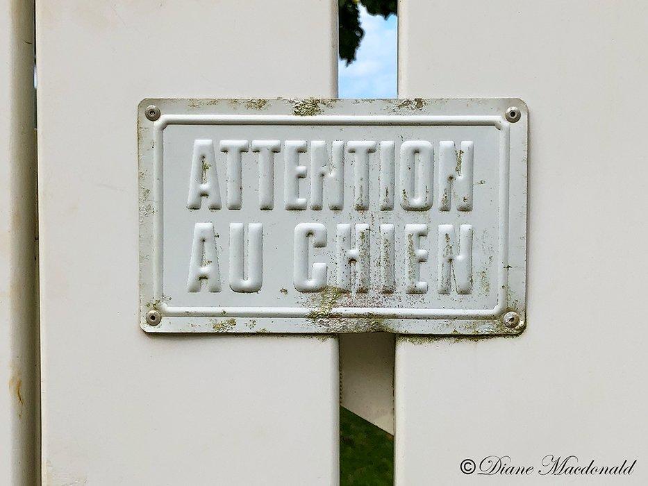 beware of dog huahine.jpg