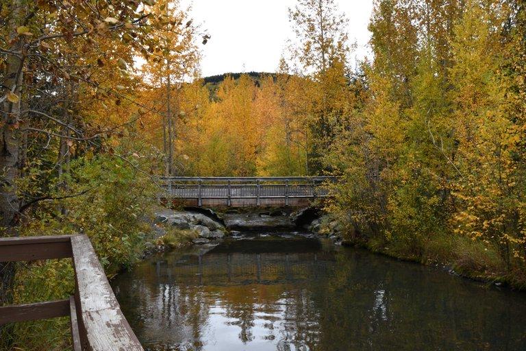 Tern Lake campground bridge