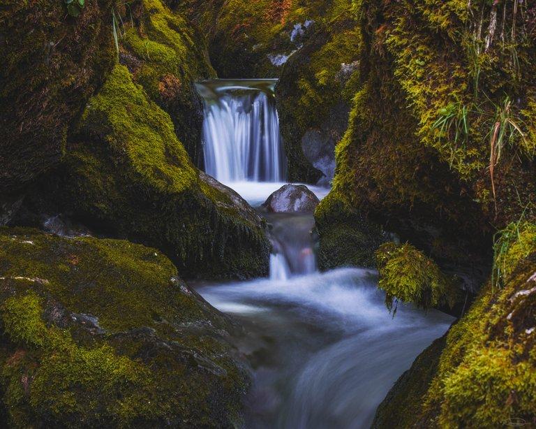 Little Waterfall in Šunikov vodni gaj, Lepena Valley - Slovenia