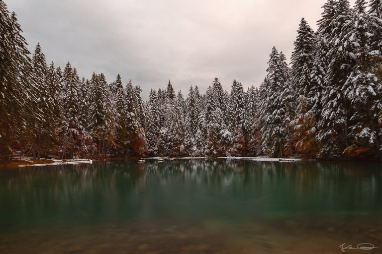 Snowy Mountains : Foggy Valley - little green lake in the woods