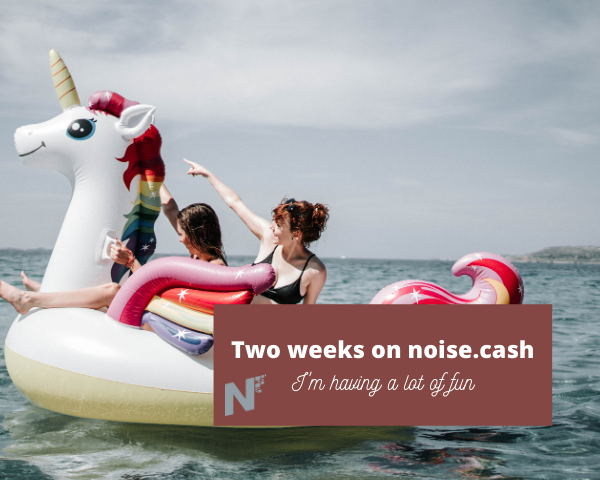 Two weeks on noise.cash .png