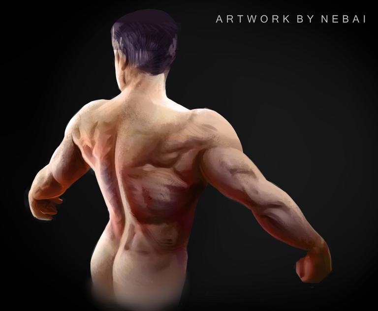 muscles_arganza_art_Nebai_color2.png