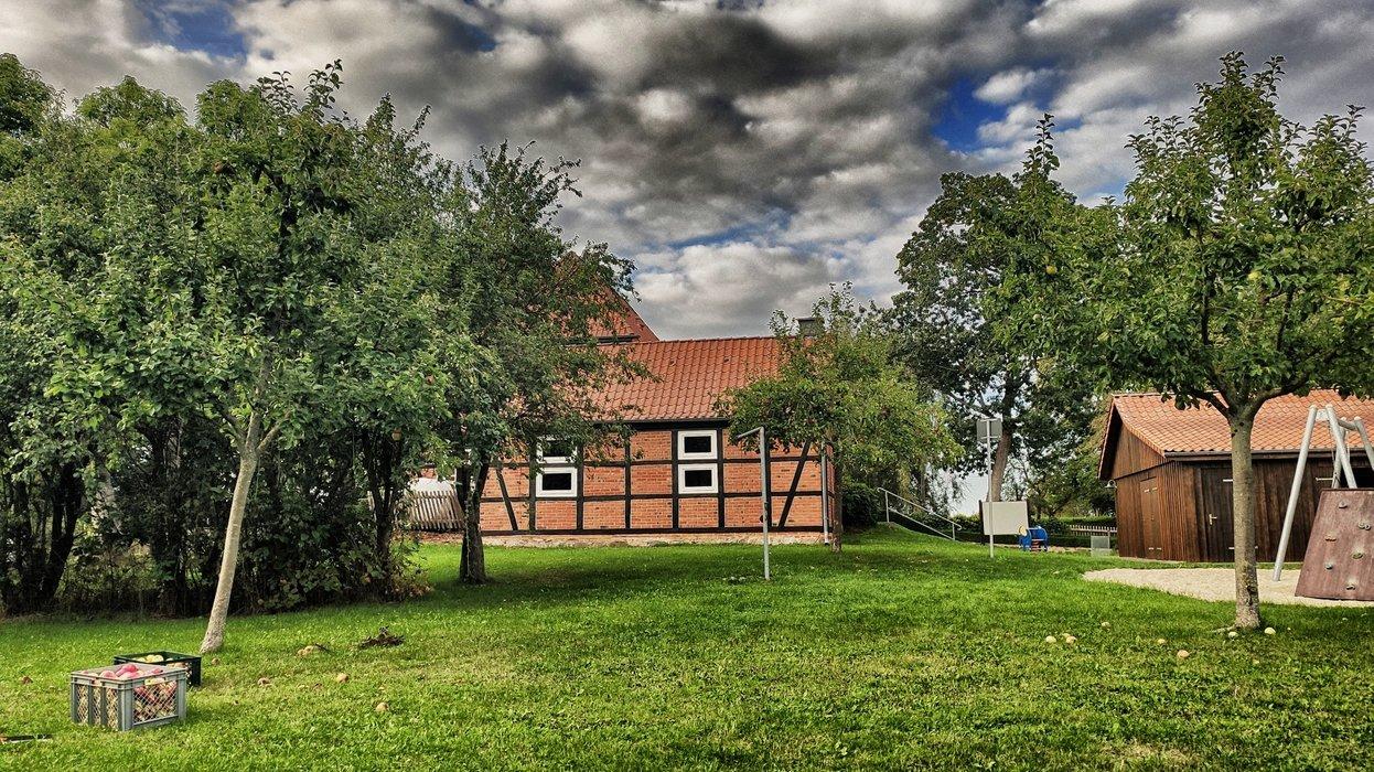 The apple garden at Neu Wendischfurth.