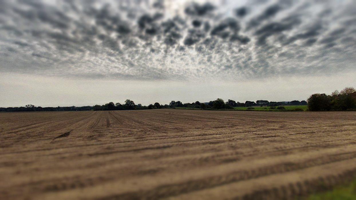 Cloudy sky over forgotten land.