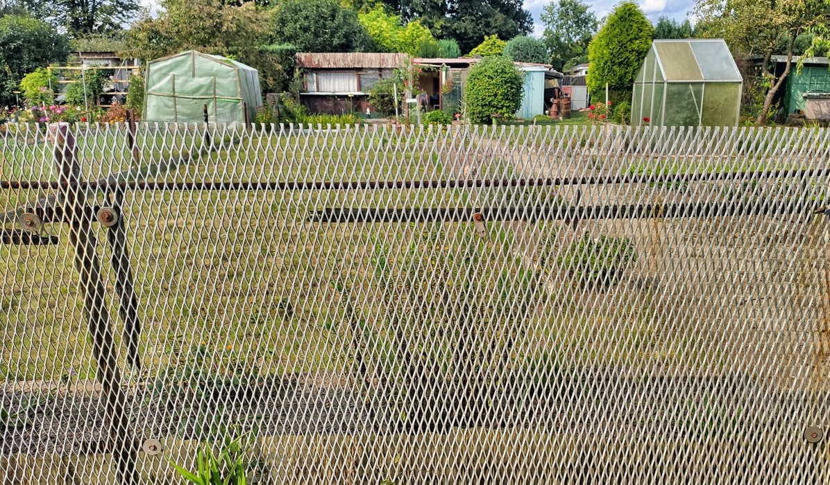 The iron fence, once a killing part of the borderline, now garden fence.