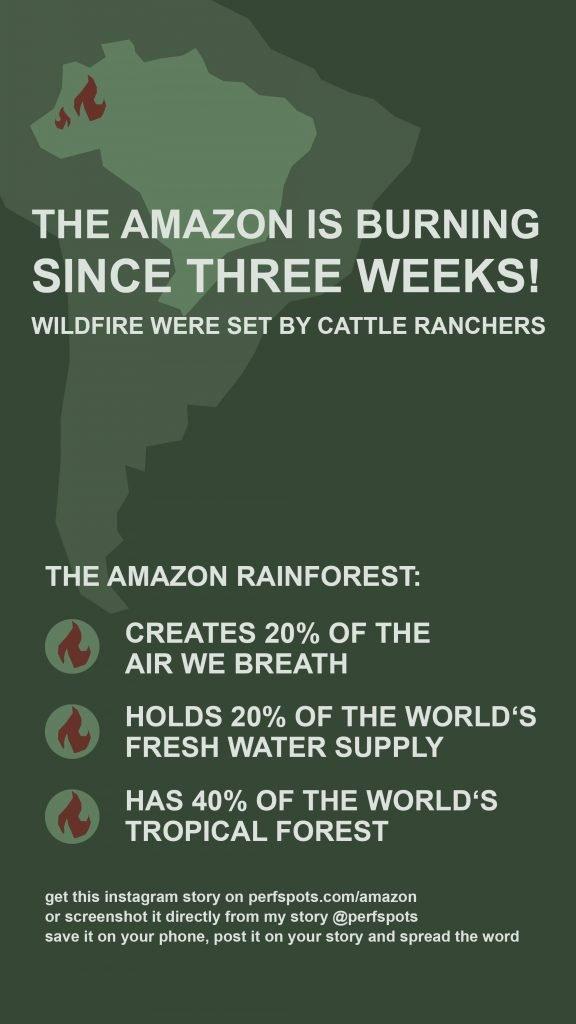 amazonas infografik