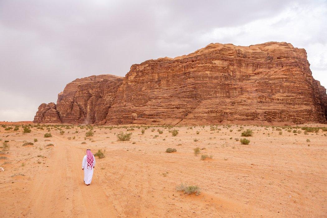 Wandering in Wadi Rum